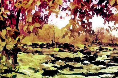 ruduo, kraštovaizdis, spalvos, sezonas, gamta, spalvų sezonas