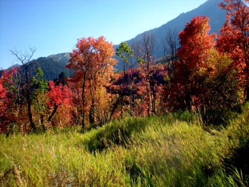 seasons october outdoor