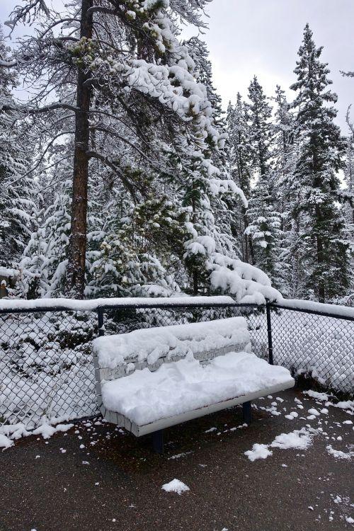 seat snow bench