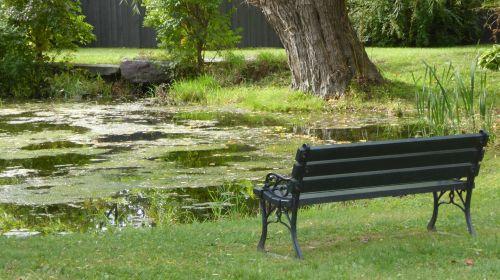 tvenkinys, sodrus, žalias, stendas, sėdynė, romantiškas, sėdynė prie tvenkinio