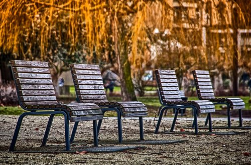 seating arrangement  benches  bank