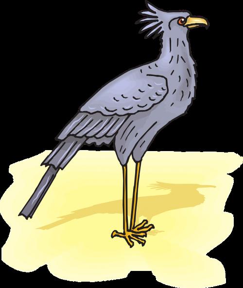 secretary bird sand