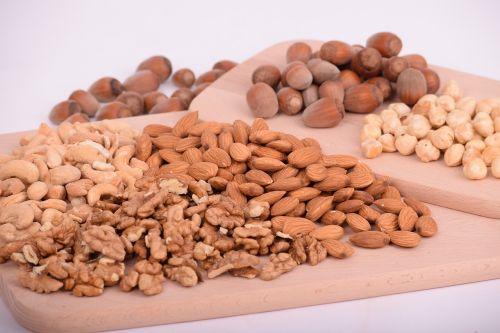 seed food batch