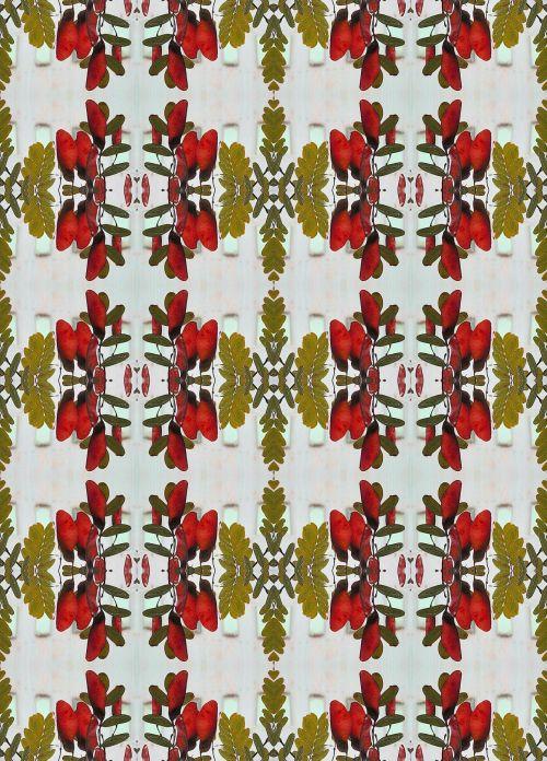 Seedpod Wallpaper