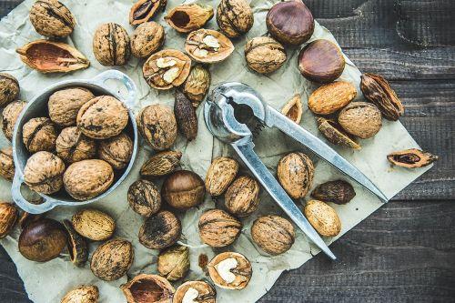 seeds nut food