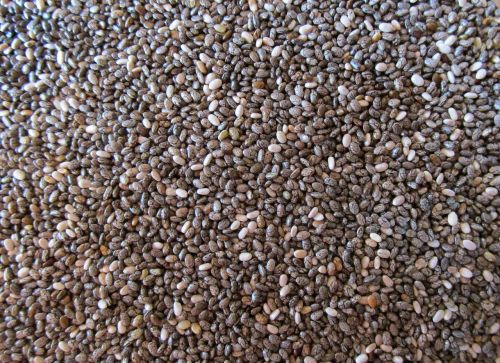seeds food healthy foods