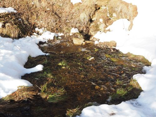 seepage site water pond brook