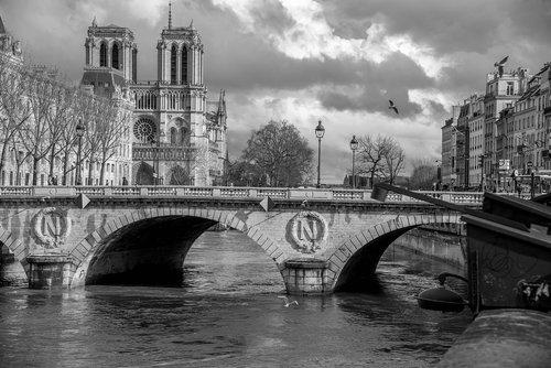 seine  paris  cathedral