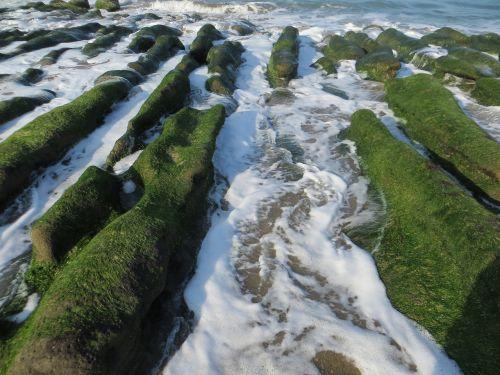 sence sea coastal