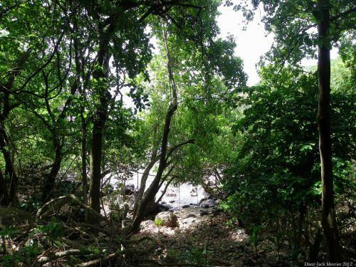 Three Rivers Trail 32