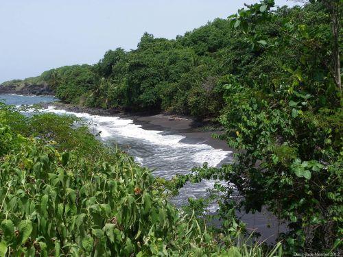 Three Rivers Trail 53