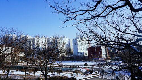 seoul ewha womans university snow
