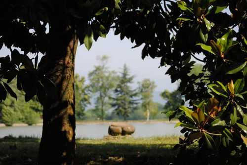ežeras, gamta, vaizdas, ramybė, ramybė, ramybė