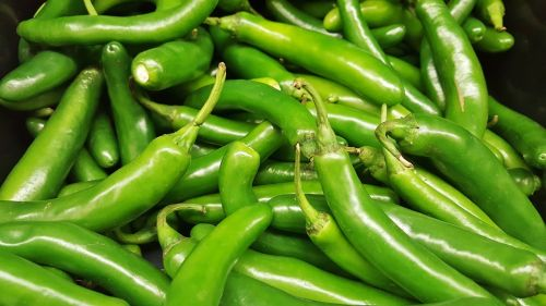 serrano peppers peppers chiles