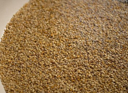 sesame seeds spice