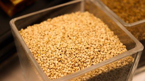 sesame  sesami  seeds