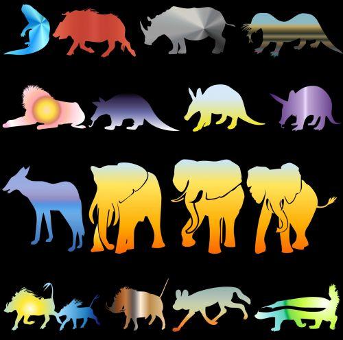 Set Of Animals I