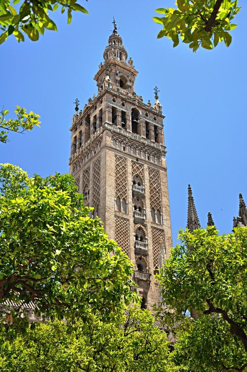 seville andalusia cathedral