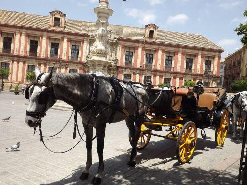 seville horse plaza