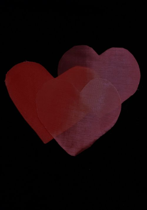 Shadow Of Hearts