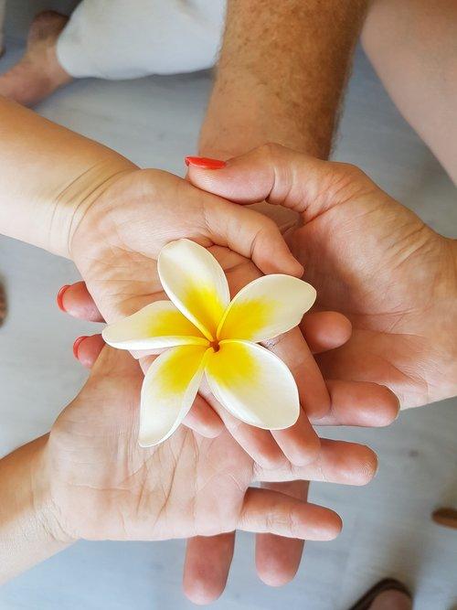 shake hands  family  friendship
