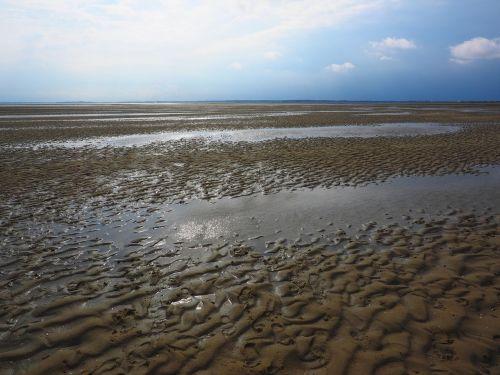 shallow watts wadden sea