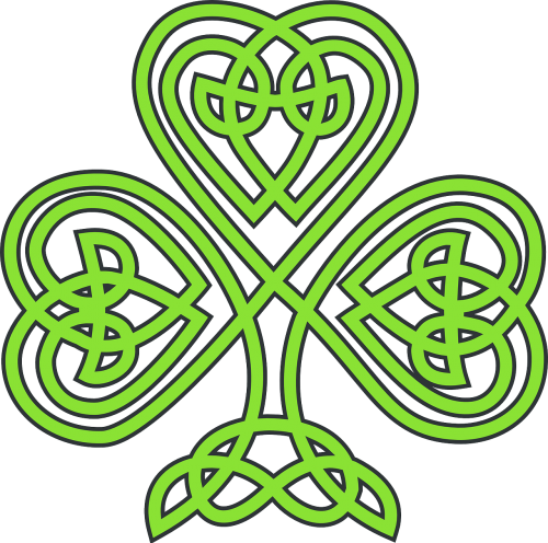 shamrock celtic plant