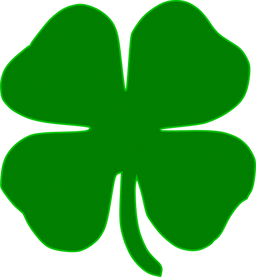 shamrock clover irish
