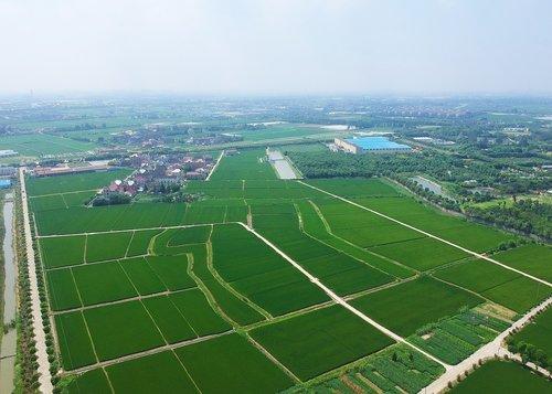 shanghai  jiading  huating