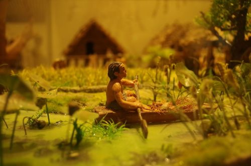 shanghai natural history museum landscaping food