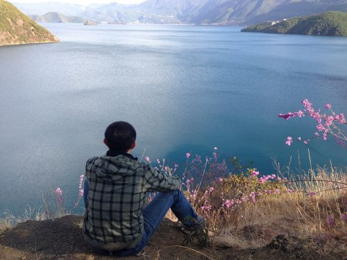 shanghai put lake facing the sea spring flowers
