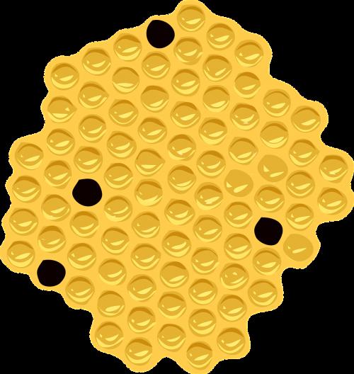 shape orange spots