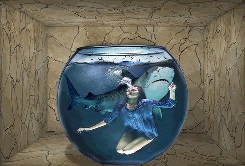 shark  girl  nightmare