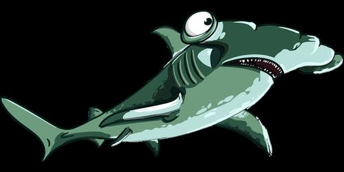 shark  fish  hammer