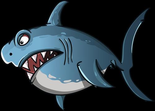 shark  cartoon  fish