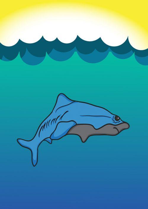 shark blue sea