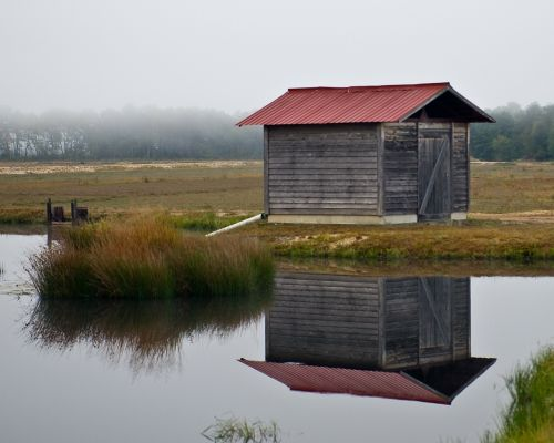 shed lonely foggy