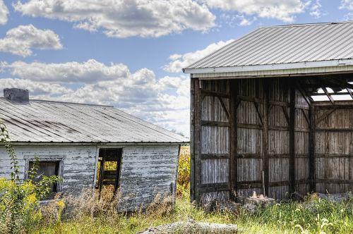 shed sheds barns