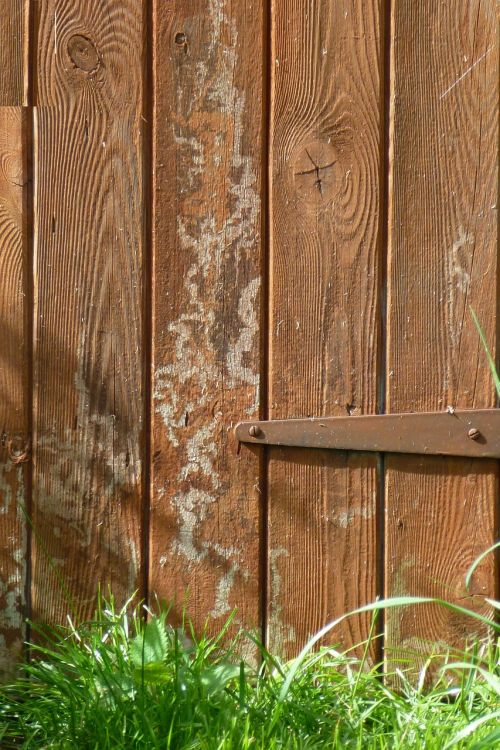 shed door rustic wasp marks