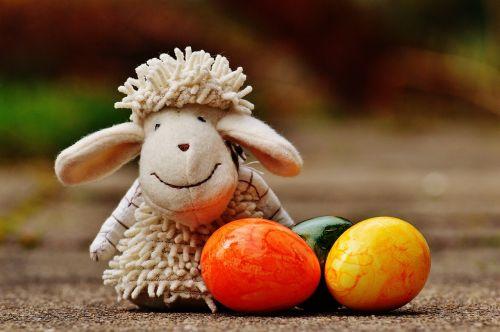 sheep egg colorful
