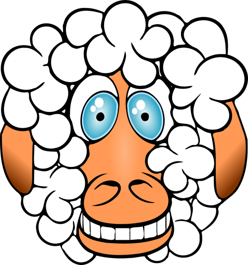 sheep crazy grinning