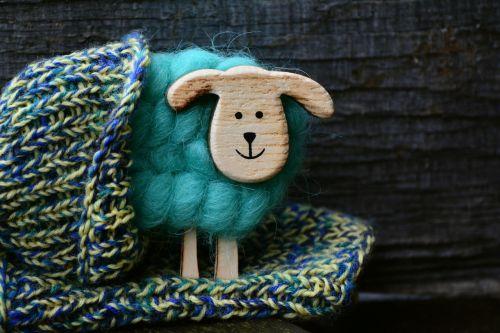 sheep wool knit
