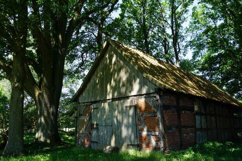 sheep barn old truss
