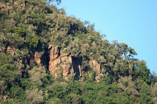 Sheer Rock Cliffs