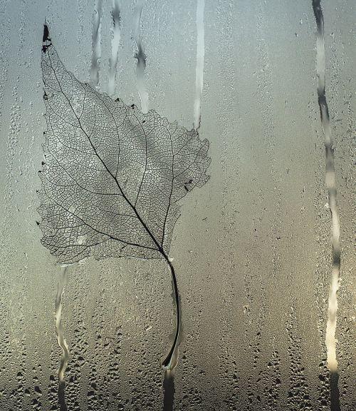sheet glass drops