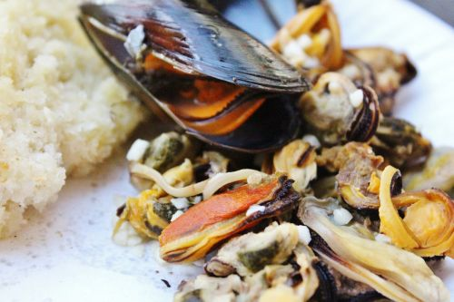 shell mussel meat seafood