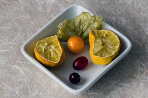 shell lemon physalis