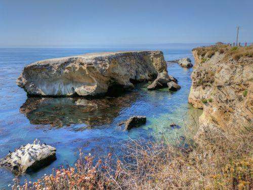 papludimys, jūra, vandenynas, bangos, akmenys, paukščiai, lukštais & nbsp, paplūdimys, pismo & nbsp, paplūdimys, Kalifornija, kraštovaizdis, lukšto paplūdimys