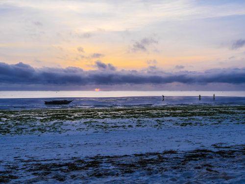 shell seekers breakfast sunrise