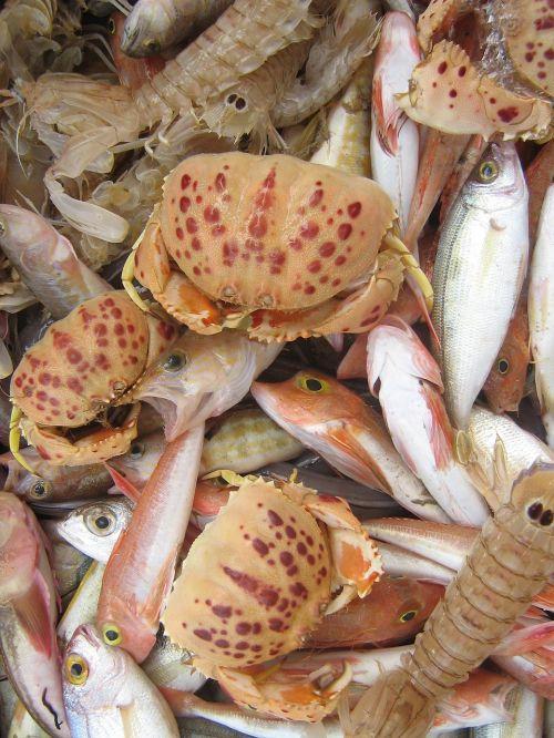 vėžiagyviai,jūros gėrybės,turgus,maistas,žuvis,buvo pasiūlyta,delikatesas,žuvų skaitiklis,Viduržemio jūros,maistas,valgyti,frisch,padaras,sveikas,vėžys,Viduržemio jūros virtuvė